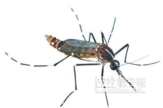 陸蚊帳錢進非洲 最高1年賺9億