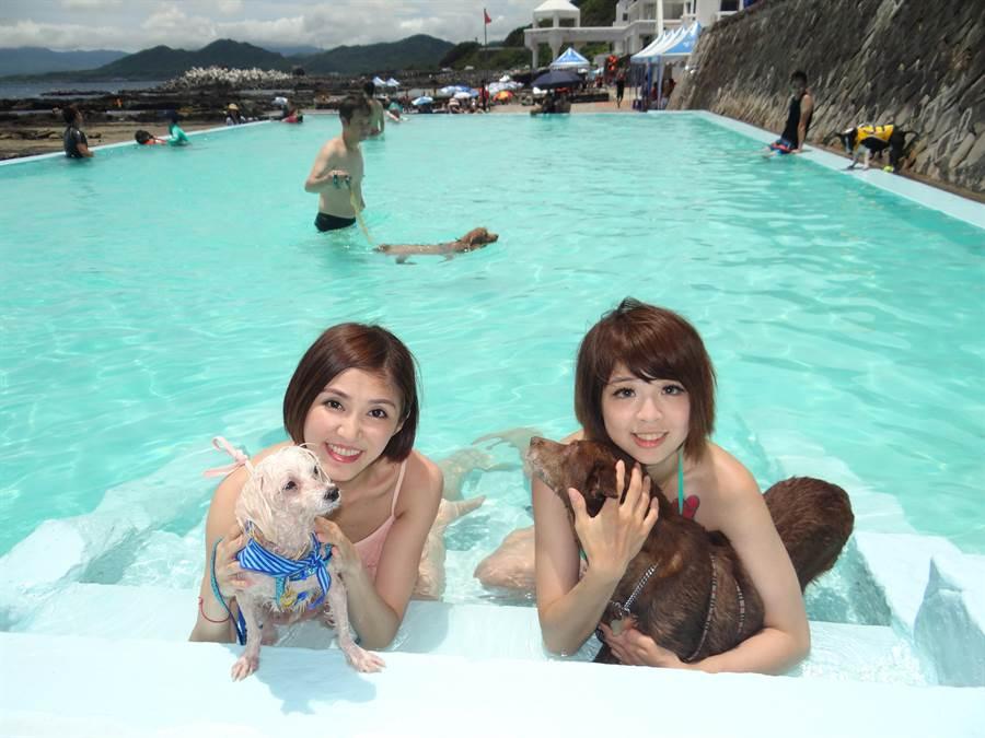龍洞四季灣裡面附有「寵物泳池」,使得不少民眾帶著毛小孩前往一同戲水,讓自己與寵物一起消暑。(曾百村攝)