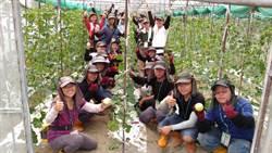 農業專業技術團結訓 台南、嘉義農業師傅準備好了