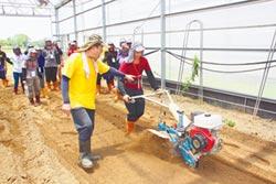 台南農業師傅 僅過半上工