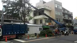 尼莎颱風來襲 新竹市全力備戰