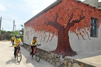 金門瓊林紅磚樹牆 熱門打卡新景點
