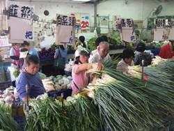 颱風影響不如預期 菜價走跌