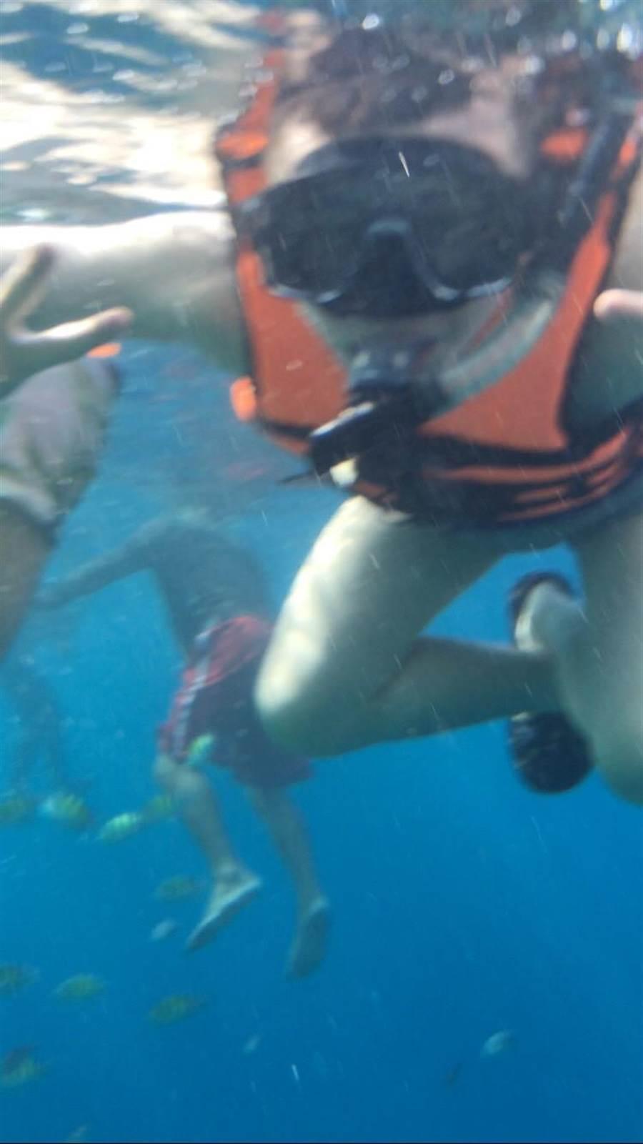 國人潛水往往習慣拿食物吸引魚群,但要注意,在泰國可是非常嚴重的違法行為。(林承彥 攝)