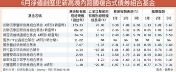 強勢跨國債組合基金 淨值創高