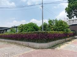 中市水肥中心換新裝 鐵皮圍籬成植栽牆