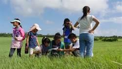 陳無嫌教育基金會辦生態體驗營 支持偏鄉學童「在地遊學」