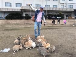 走訪動物快樂天堂 日本三小島好療癒