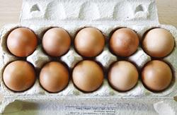 韓陷毒雞蛋風暴 鵪鶉蛋人氣反竄高