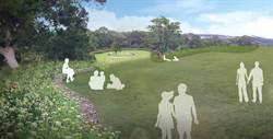 青青草原新規畫 2千萬打造求婚草坪
