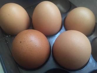 彰化驗出芬普尼毒蛋 超過歐盟標準30倍