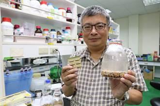 牛樟芝成份安卓錠C 研究發現可預防高血糖所引起的相關疾病