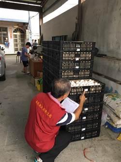 芬普尼超標雞蛋 投縣回收3100斤