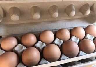 彰化近6千顆毒蛋流入基隆 衛生局緊急退回