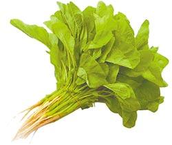莧菜綠豆芽蠟燭包 造福減肥族