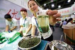 夏季陽盛炎熱 宜喝綠茶
