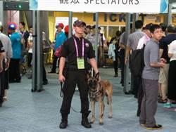 世大運》警犬與衝鋒槍出爐 閉幕式警方嚴陣以待