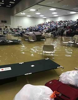 哈維颶風已釀24死 洪水又再吞噬2市