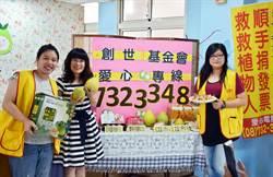 社福捐款低迷 屏東創世義賣柚子募款