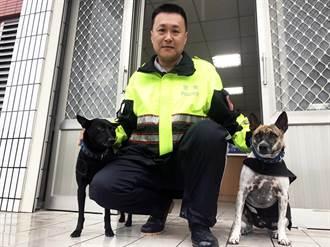 流浪狗升格為警戒犬 彌補台東警力不足