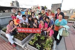 與社區大學攜手 新北市府打造屋頂可食地景