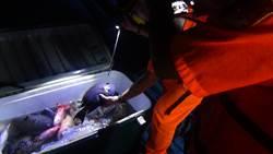 恆春海巡執行護永專案 強力取締膠筏潛水打魚