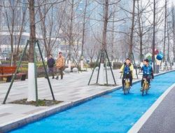 綠色出行 陸各城爭建自行車道