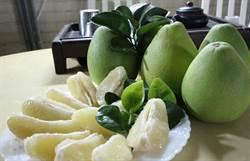 東森購物攜手小農 產地直播柚子成熟時