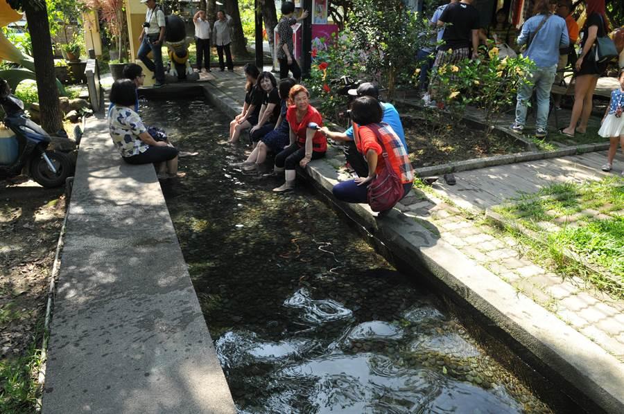 埔里鎮舊名「五港泉」的區域,地下水量相當豐富,宏基蜜蜂生態農場的泡腳池,即來自自然湧泉。(廖肇祥攝)
