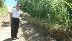 滿州飆山釀1死 鄉公所:將針對管理辦法增修細項