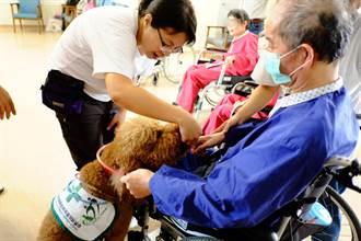 治療犬駐診樂活園區 老人笑開懷