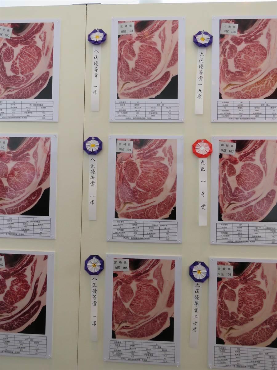 日本全國和牛能力共進會11日在仙台舉辦5年1度的和牛評選大賽,宮崎牛奪肉牛冠軍,達成3連霸紀錄。(黃菁菁攝)