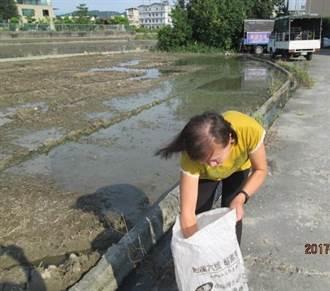 使用益菌腐化稻桿 取代露天燃燒 創造清新美好健康環境