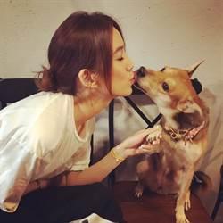 LV推慈善手鍊 陳庭妮與愛犬溼吻許下承諾