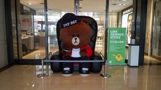首度插旗中台灣!「熊大樂活市集」進駐新光三越中港店