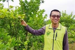 花蓮》母罹癌憂食安 大學講師轉職有機農