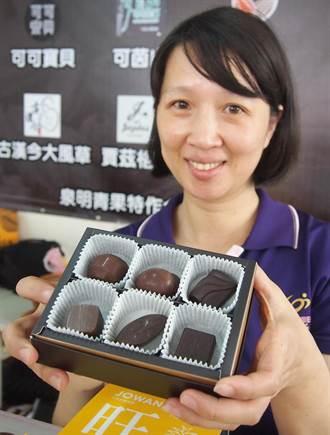 檳榔樹下間植可可 屏東成台灣巧克力王國