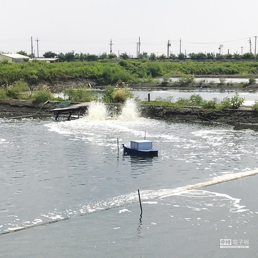圖為台灣養殖業者實際上使用富宸自動控制「i-FISH」智慧系統來管理魚塭的狀況。圖/業者提供 文/陳又嘉