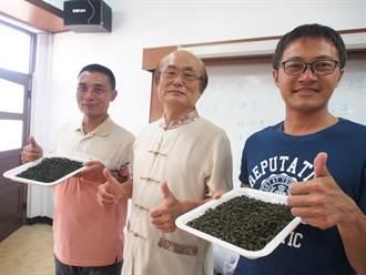 全國製茶技術競賽 35歲詹宗翰新科茶王