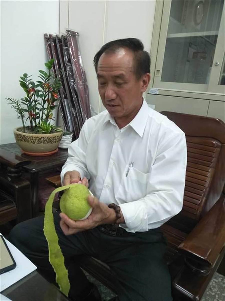 吳通龍為麻豆、六甲區議員,平時推銷當地文旦不遺餘力。(翻攝吳通龍臉書)