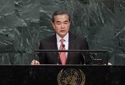 陸外長王毅:中國是世界和平的「穩定錨」