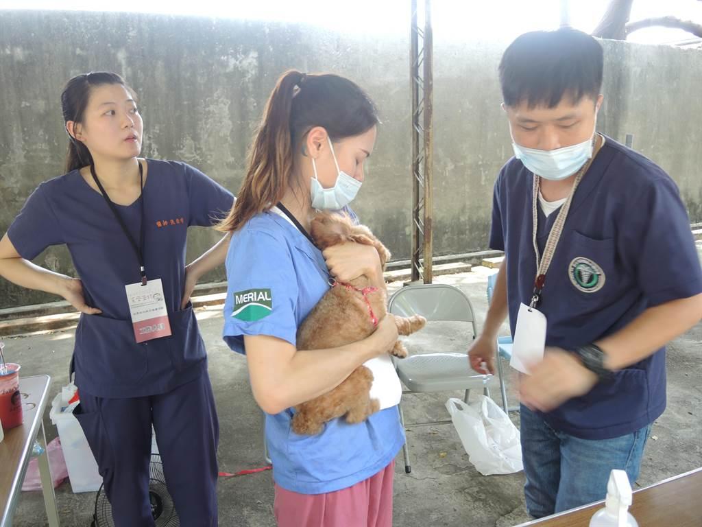 新竹縣家畜疾病防治所在世界狂犬病日前夕舉辦「毛齊來打」活動。(邱立雅攝)