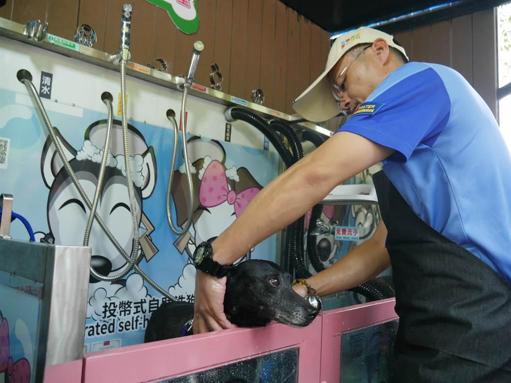 園內設有全台首座戶外投幣式自助洗狗機,包含常溫清水、中性泡沫、吸毛吸水槍、烘乾槍與殺菌除蟲等5種功能,約20到50元就能洗乾淨。(陳燕珩攝)
