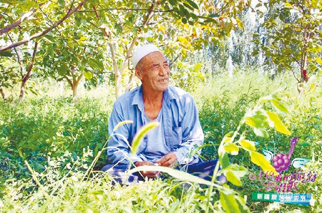 阿不都熱依木‧依熱依木在他開闢的綠洲內悠閒納涼。(取自新華網)