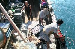 陸漁船越界捕魚猖獗 澎湖海巡再逮一船