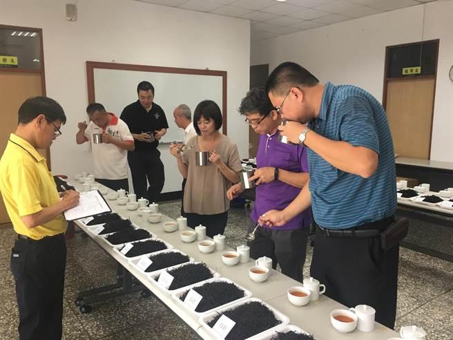 日月潭紅茶評鑑進入第二天,台茶18號成績揭曉。(沈揮勝攝)