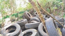 業者廢輪胎 亂扔清水斷崖