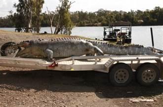 澳洲百歲「鱷魚王」被殺 警方下令全國緝兇