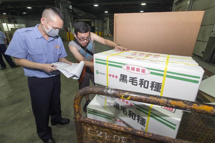 因狂牛症禁止輸台14年的日本和牛肉解凍,首批日本和牛在28日晚間抵台,在會同海關、農委會動植物防疫檢疫局、及食藥署三單位人員查驗下,最快3日後可上市販賣。(陳麒全攝)