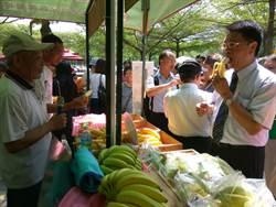 香蕉價格崩跌 農糧署發起一人一根救蕉農